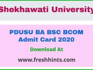 PDUSU BA BSC BCOM Admit Card 2020