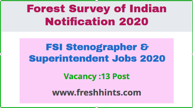 FSI Stenographer & Superintendent Jobs