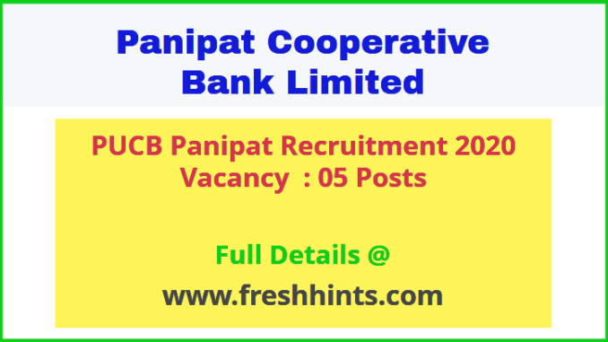 PUCB Panipat Recruitment 2020