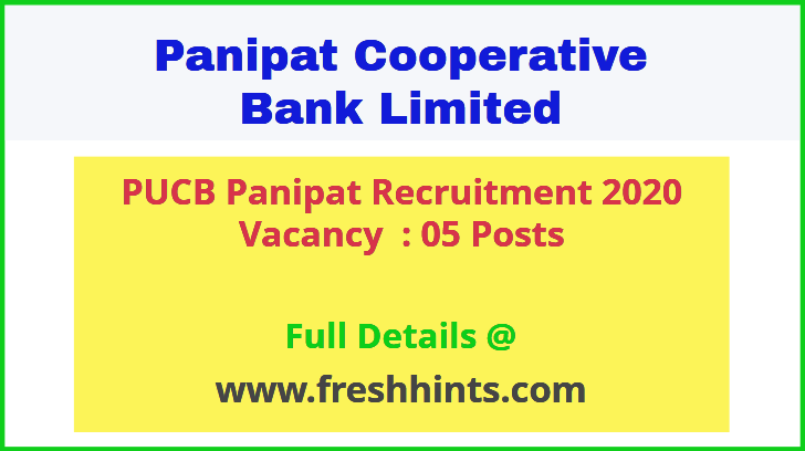 PUCB Panipat Recruitment 2020