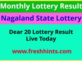 Nagaland Lotteries Dear 20 Winner List 2020
