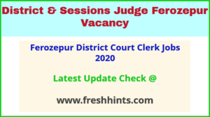 Ferozepur District Court Clerk Jobs 2020