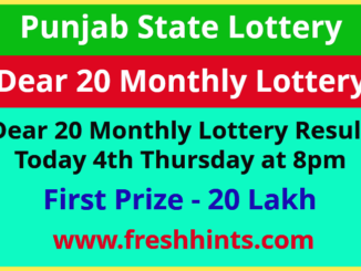 Punjab Lottery Dear 20 Monthly Winner List 2021