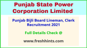 Punjab Bijli Board Lineman, Clerk Recruitment 2021